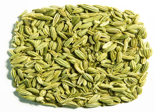 Exporter and Suppliers of Fennel Seeds in Pakistan
